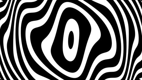 Concentric Warp Curves Rotating BW Psychedelic Abstract Motion Background Loop 2 Animation