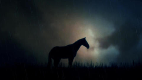 An Epic Stallion Horse Standing on a Field Under a Lightning Storm Image