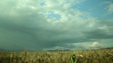 Clouds over a field of wheat illuminated by the sun 61 Footage