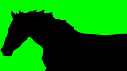 SHADE OF RUNNING HORSE Animation