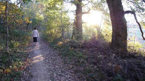 Women walk in an alley of the park in a fall cold day lit the sun at sunset 186 Footage