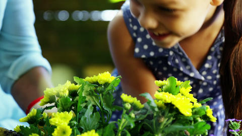 Grandmother and grand daughter smelling flowers Footage
