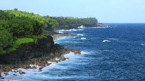 Shoreline Of Hawaii Footage