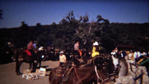 1972: Horseback riding meetup basecamp outdoor stables ビデオ