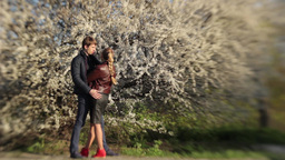 Guy hugs a girl on a date in the Park in the spring near... Stock Video Footage