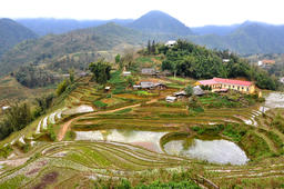 Terraced rice field in Northern Vietnam Photo