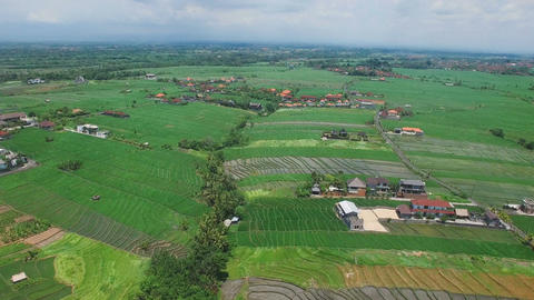 Aerial footage of rice fields and village Footage