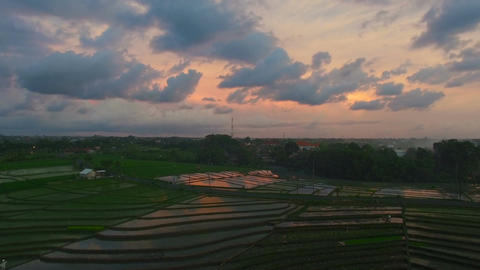 Scenic video footage of rice fields and Bali village at sunset Footage