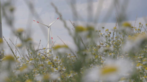 Windmill view through the grass energy production Footage