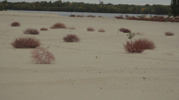 A Tumbleweed Rolls Through The Desert stock footage