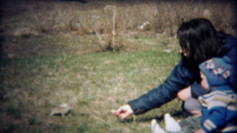 1971: Mother and baby son feed wild chipmunk rodent animal Footage