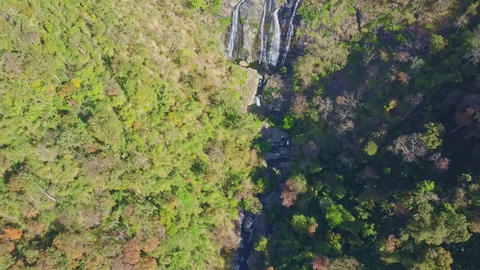Flycam Moves along Gorge with River Cascade in Thick Jungle Footage