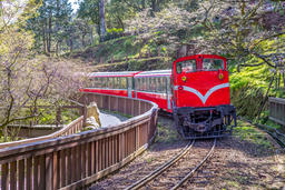 L1009629railway in alishan forest recreation area in chiayi Foto