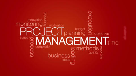 Project Management Animation