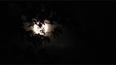 Full moon 02 Stock Video Footage