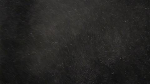 Flour Falling Stock Video Footage