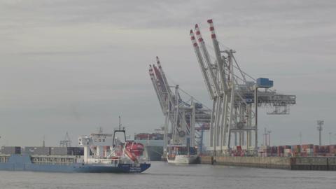 00201 1 MIN Cargo Port HAM Stock Video Footage