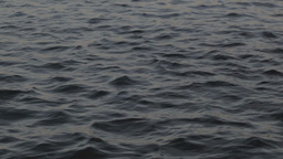 00235 Water SPB Stock Video Footage