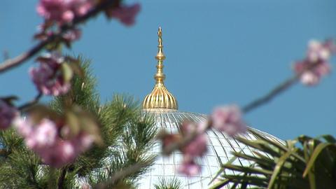 Aya Sofya (Hagia Sophia) e Footage