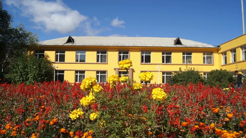 Yellow building and flowers 02 Stock Video Footage