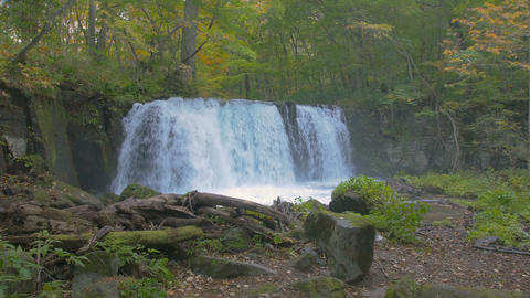 Choshi Waterfall,Oirase Keiryu,Aomori,Japan,Filmed In 4K stock footage