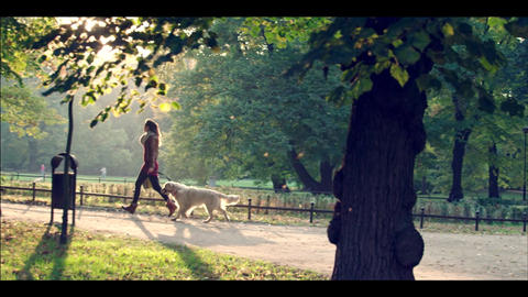Woman with a golden retriever resting in the autumn park ビデオ
