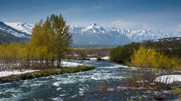 Beautiful view of spring mountain river in Kamchatka Peninsula ビデオ