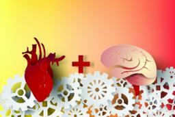 paper art of brain and heart with gear concept idea,vector ベクター