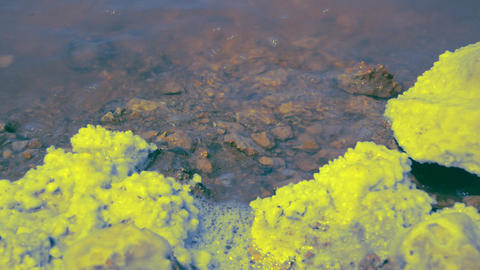 Chemical Pollution Gathered On The Shore Image