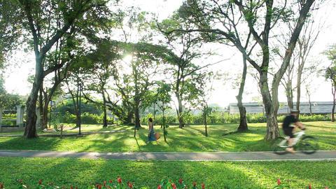 Cycling and walking in Benchakitti Park Bangkok city Thailand Footage