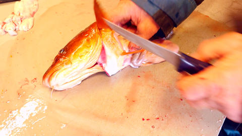 Worker cleaning and filleting fresh sea cod fish. Hands professionally work with Footage