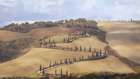 Winding Road with Cypress Trees in Tuscany. Fast Motion Footage
