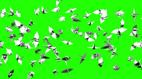 Origami Crane On Green Chroma Key CG動画