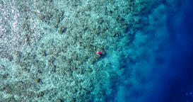 v06437 Aerial flying drone view of Maldives white sandy beach young people snork Footage
