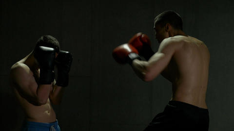 Young kickboxers practicing box punches and hits in the sportive club Live Action