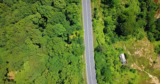Aerial View Of Road Running Through Carpathian Mountains Forest Footage