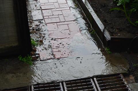 Rainy Day フォト