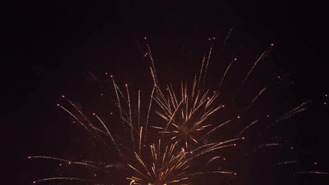 Varied Colorful Fireworks Footage