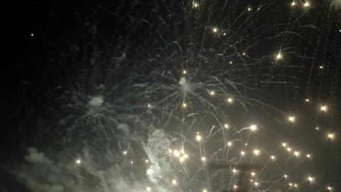 Varied Colorful Fireworks ビデオ