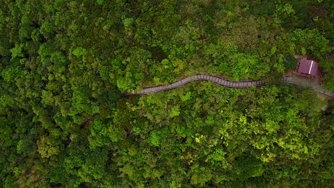 Aerial pan shot of nice winding trail at densely vegetated mountain country park Footage