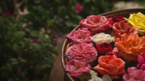Flower's Floating in the Pottery Bowl ライブ動画