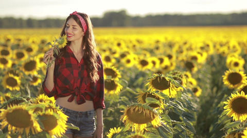 Charming girl smelling sunflower blossom in field Footage