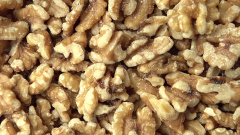 Walnuts. Vertical and smooth movement of the motorized slide, on the Walnuts ライブ動画