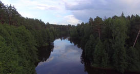 A river in the woods Footage