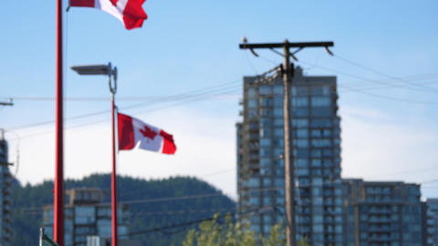 Motion of de-focus to focus of Canadian flag flying on flagpoles with 4k resolut Footage