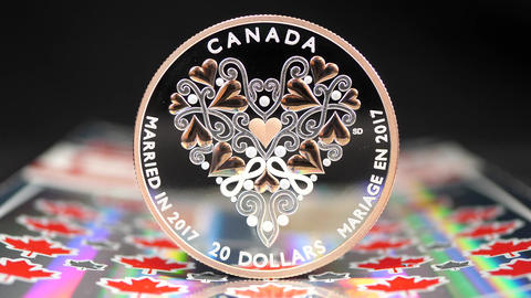 Motion of married in 2017 twenty dollars coin on maple leaf scratch lottery tick Footage