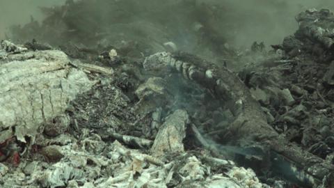 Smoke dry twigs burning fire burning Coals of wood burned 26 Footage