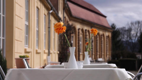 Summer terrace, equipped with tables covered with white tablecloths. On each tab Live Action