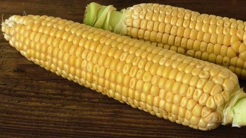Two fresh corn on cobs on rustic wooden table Footage