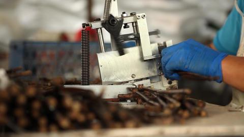 Cutting small sticks Footage